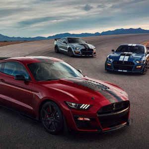 2020-ford-shelby-gt500-80.jpg