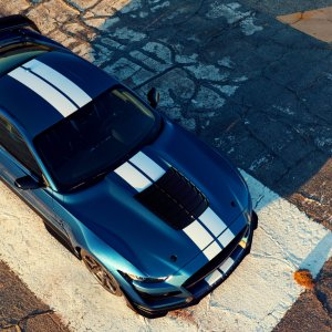 2020-ford-mustang-shelby-gt500-1(11).jpg